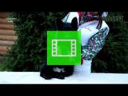 Team Zilber Wasserfall OLBERG / BLACK - LH /