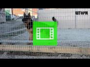 BEST!!! Team Zilber Wasserfall SHTORM / VIDEO 02 /