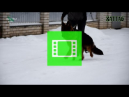Boy of EKARAJ and BAKKARA - HATTAB / VIDEO 02 /