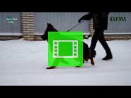 Girl of EKARAJ and BAKKARA - HURMA / VIDEO 02 /