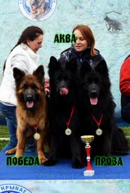 07_MV_OS_Smolensk_2021_POBEDA_AKVA_PROZA